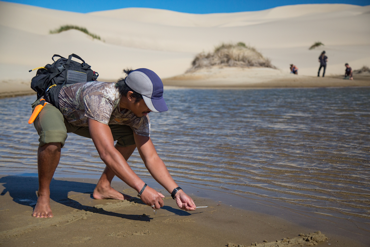 Tracking at the Oregon Sand Dunes