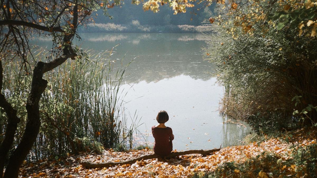 Sit Spot At Pond