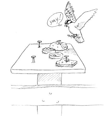 Homemade Birdfeeder 2