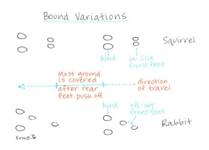 Bound-Variations-Drawing_web
